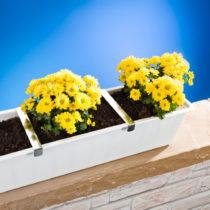 Blancheporte 4 svorky na kvetinové hrantíky