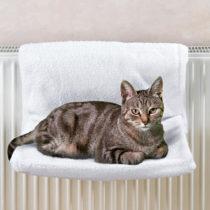 Blancheporte Mačacie ležadlo na radiátor