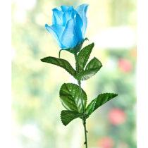 Blancheporte Ruža pre predpoveď počasia