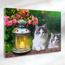 "Blancheporte LED obraz ""Mačky"""