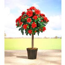 Blancheporte Stromček s kvetmi