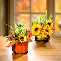 Blancheporte Jesenný aranžmán v košíku s tekvicou
