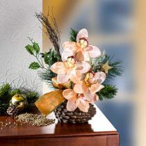 Blancheporte Väzba orchideí, šampaň šampaň