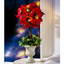 Blancheporte Stromčeková vianočná hviezda