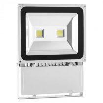 Lightcraft Alphalux, LED osvetlenie, reflektor, studená biela, IP65, 100 W