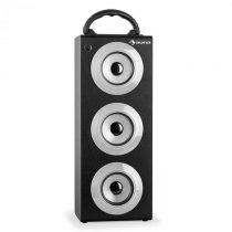 Auna Beachboy XXL, bluetooth reproduktor, strieborný, USB, SD, AUX, FM