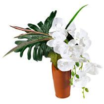 """Blancheporte Aranžmán """"Orchidea vo váze"""""""