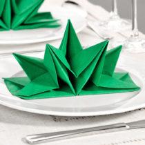 Blancheporte 12 zložených obrúskov, zelená zelená