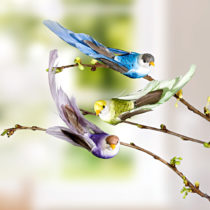 Blancheporte 3 vtáčiky