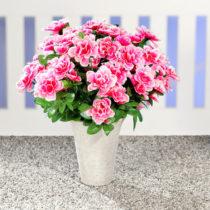 Blancheporte Kytica azaliek, ružová-biela ružová/biela