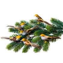 Blancheporte 6 vtáčikov