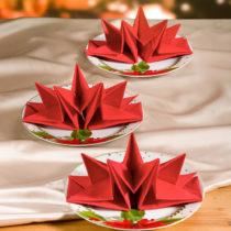 Blancheporte 12 zložených obrúskov, červená červená