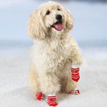 Blancheporte Ponožky pre psov, veľké veľké