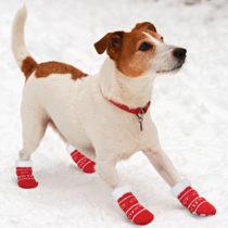 Blancheporte Ponožky pre psov, malé malé