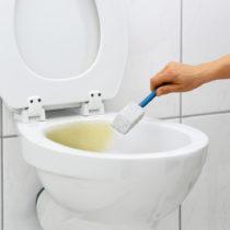 Blancheporte Špeciálny WC čistič