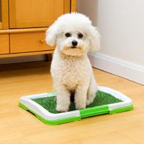 Blancheporte Toaleta pre psov