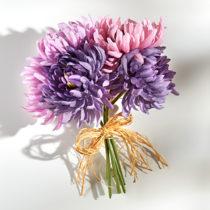 Blancheporte Kytica chryzantém