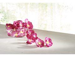 Magnet 3Pagen Svetelná reťaz Orchidey