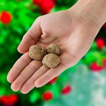 Magnet 3Pagen 3 kúzelné guľôčky so semenami