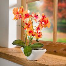 """Magnet 3Pagen Orchidea """"Phalaenopsis"""" oranžová"""