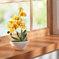 "Magnet 3Pagen Orchidea ""Phalaenopsis"" žltá"