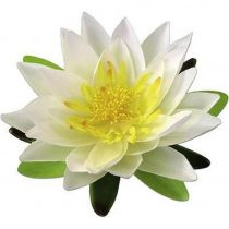Dekoračný Kvet Lotos