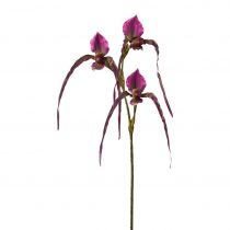 Orchidea 3019255mm-00