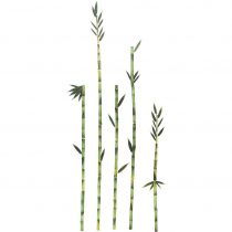 Ozdobné Nálepky Bambus